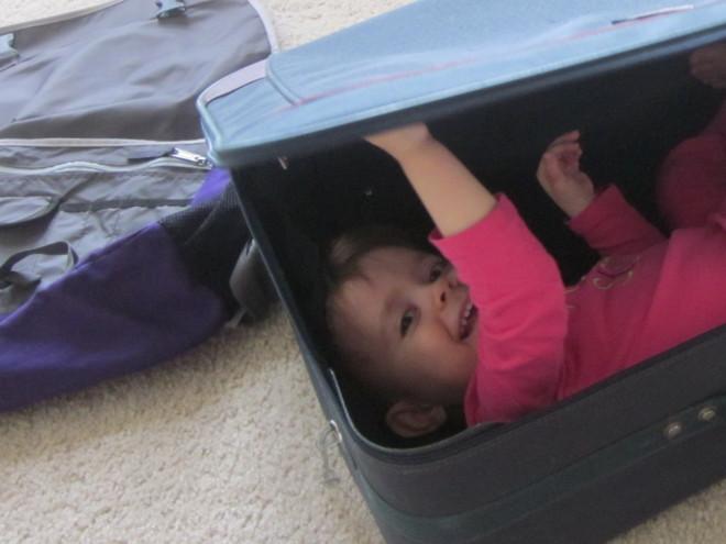 photo suitcase_zps9b86d52c.jpg